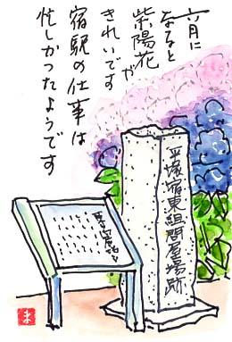 明治28年に種から植えた「くすのき」が今や大木に。(崇善小学校)