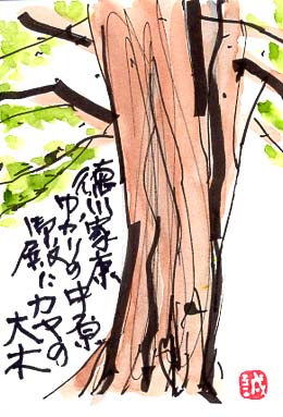 中原御殿とは相模国平塚中原にあった徳川将軍家の別荘です。